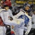 Taekwondo_DutchOpen2012_A0510