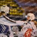 Taekwondo_DutchOpen2013_A0101