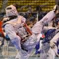 Taekwondo_DutchOpen2013_A0390