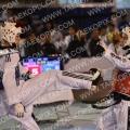 Taekwondo_DutchOpen2013_B0164