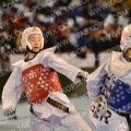 Taekwondo_DutchOpen2013_B0551