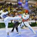Taekwondo_DutchOpen2014_A00025
