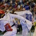 Taekwondo_DutchOpen2014_A00178