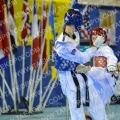 Taekwondo_DutchOpen2014_A00326