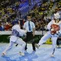 Taekwondo_DutchOpen2014_A00433