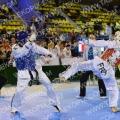 Taekwondo_DutchOpen2014_B0274