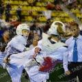 Taekwondo_DutchOpen2014_B0457