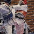 Taekwondo_GermanOpen2010_B0307.jpg