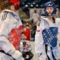 Taekwondo_GermanOpen2014_B0382
