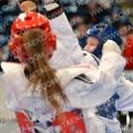 Taekwondo_GermanOpen2014_B0394