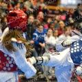 Taekwondo_Keumgang2016_A00106