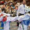 Taekwondo_Keumgang2016_B0420