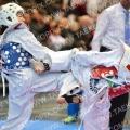 Taekwondo_Keumgang2016_B0508