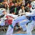 Taekwondo_Keumgang2016_B0525