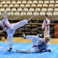 Taekwondo_NK2014_A0265