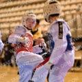 Taekwondo_NK2014_A0283