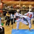 Taekwondo_NK2014_A0454