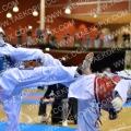 Taekwondo_NK2014_A0732