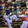 Taekwondo_NK2015_A0105