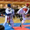 Taekwondo_NK2015_A0173