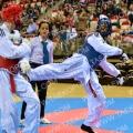 Taekwondo_NK2015_A0382