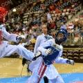 Taekwondo_NK2015_A0387