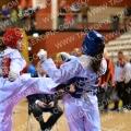 Taekwondo_NK2015_A0482