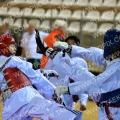 Taekwondo_NK2015_A0531