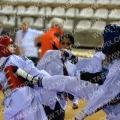 Taekwondo_NK2015_A0532