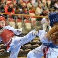 Taekwondo_NK2016_A00425