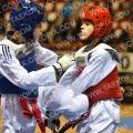 Taekwondo_NK2017_A0363