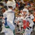 Taekwondo_OpenIlyo2015_B0029