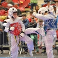 Taekwondo_OpenIlyo2015_B0260