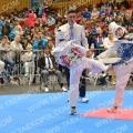 Taekwondo_OpenIlyo2015_B0313