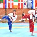 Taekwondo_OpenIlyo2016_A0028