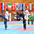 Taekwondo_OpenIlyo2016_A0173