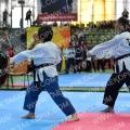 Taekwondo_PresCupKids2019_AA01579