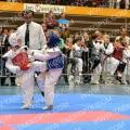Taekwondo_TapiaOpen2014_A0096